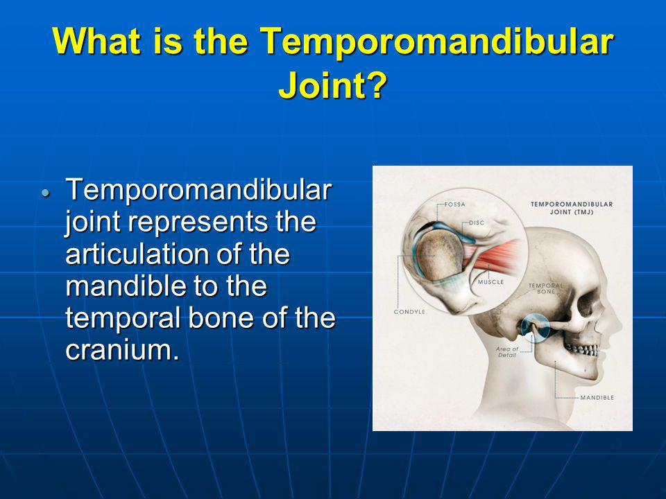 What is the Temporomandibular Joint