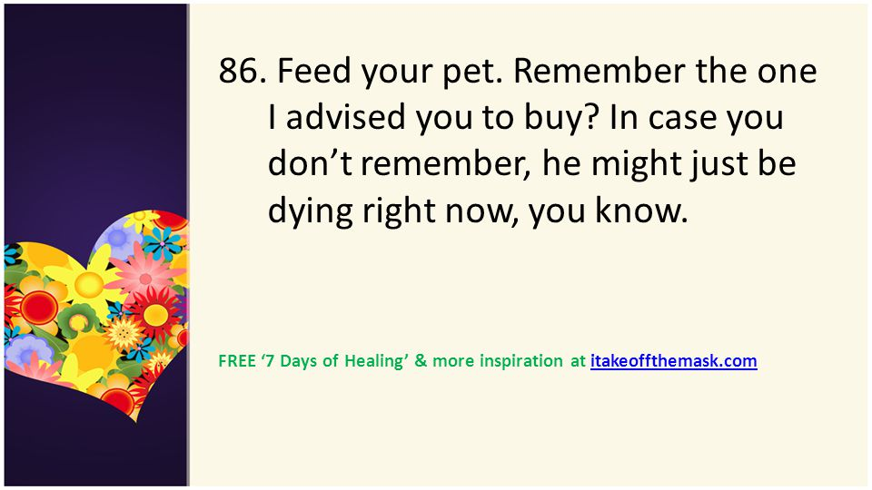 86. Feed your pet. Remember the one I advised you to buy
