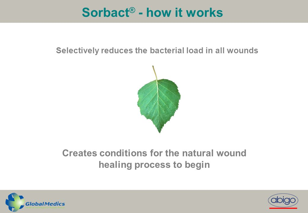 Sorbact® - how it works Selectively reduces the bacterial load in all wounds.