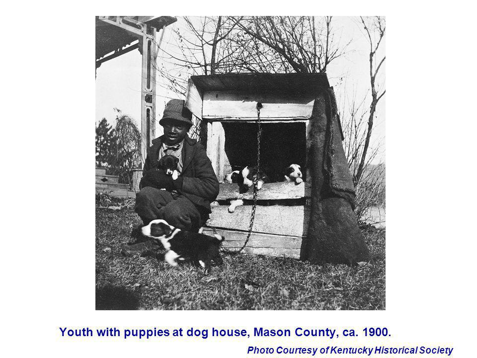 Youth with puppies at dog house, Mason County, ca. 1900.