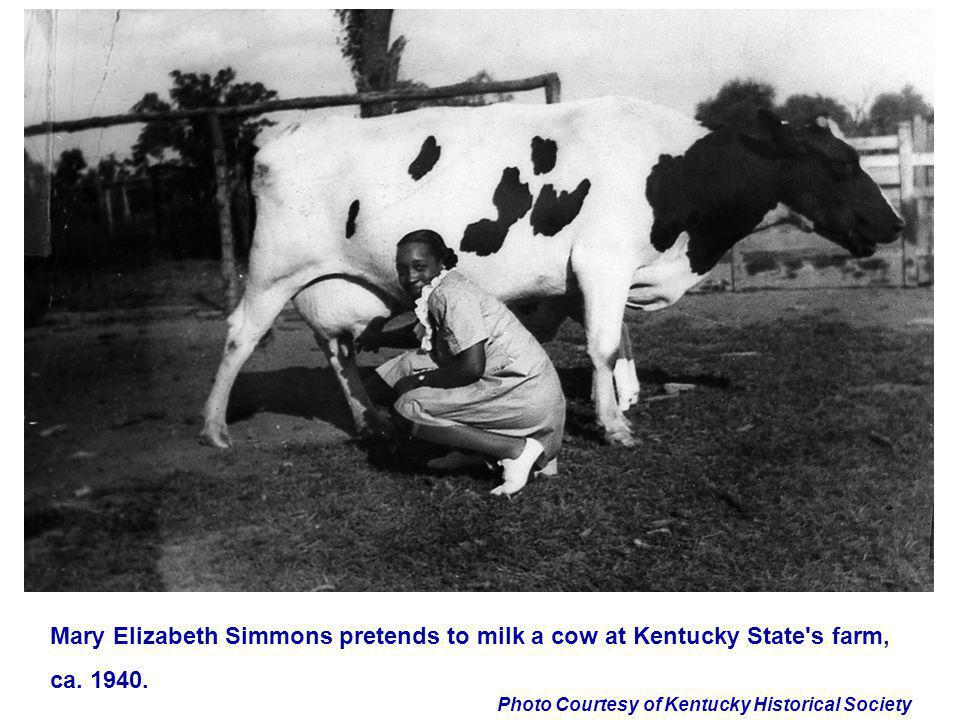 Mary Elizabeth Simmons pretends to milk a cow at Kentucky State s farm,