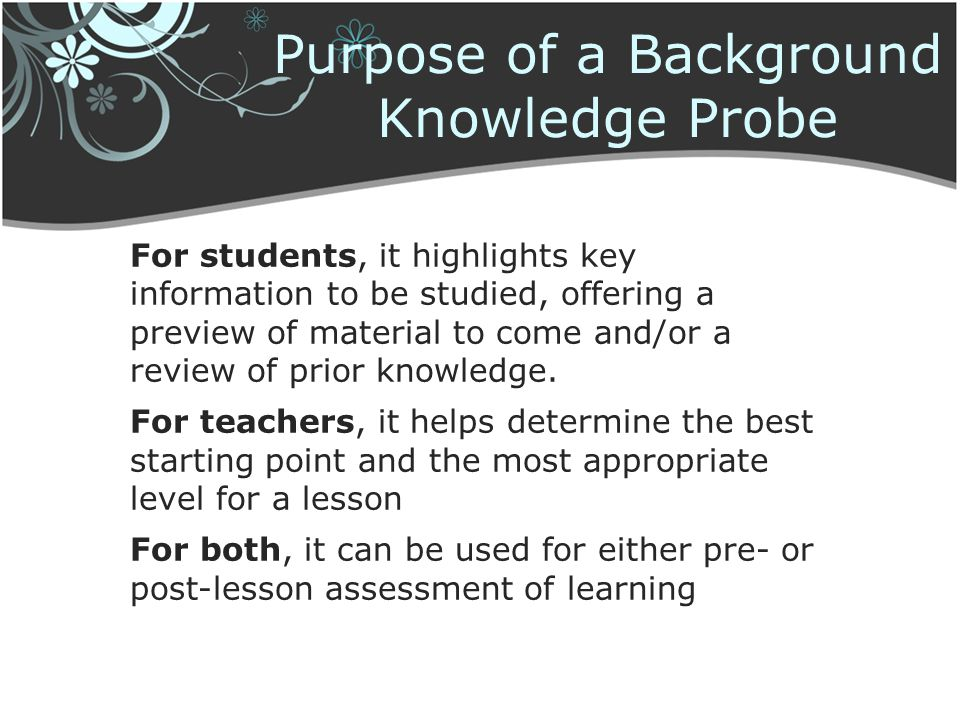 Purpose of a Background Knowledge Probe