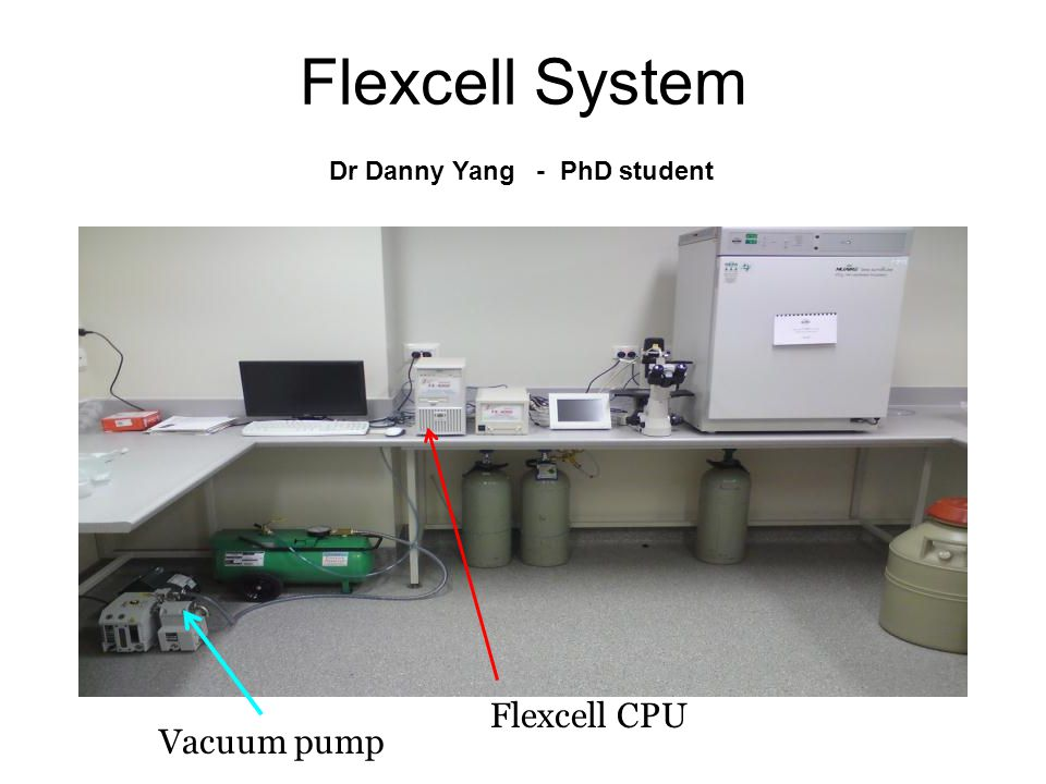 Flexcell System Flexcell CPU Vacuum pump Dr Danny Yang - PhD student