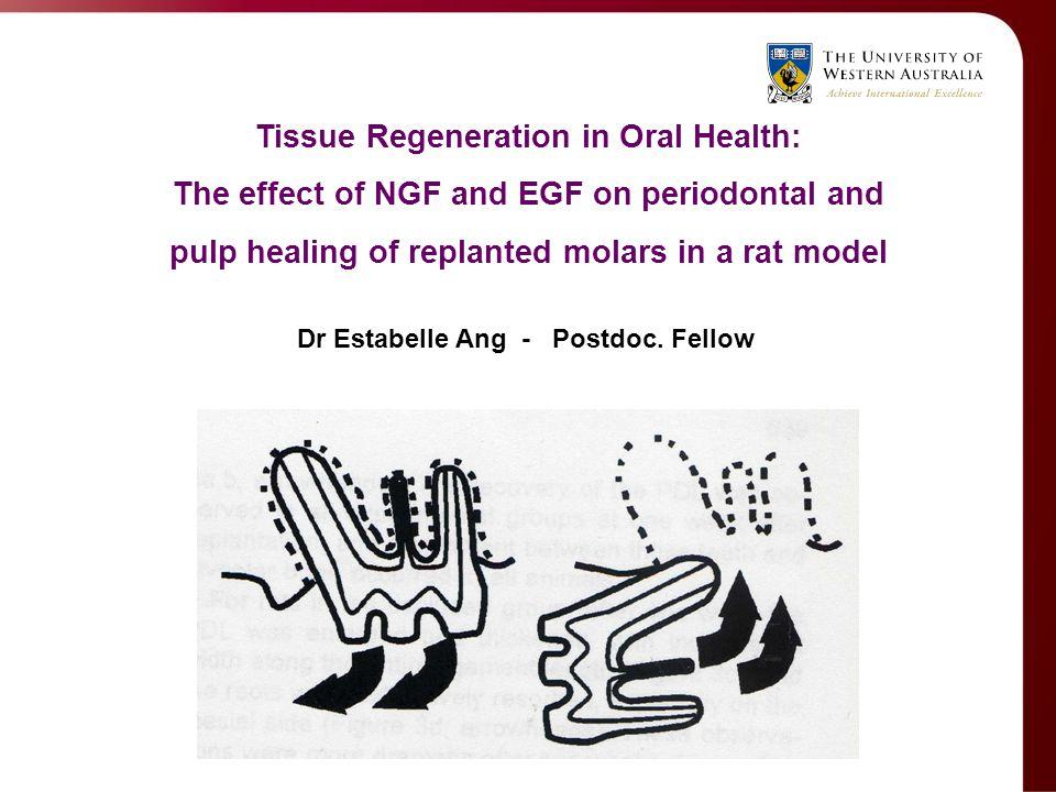 Tissue Regeneration in Oral Health: