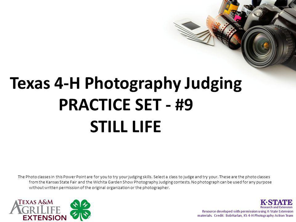 Texas 4-H Photography Judging PRACTICE SET - #9 STILL LIFE