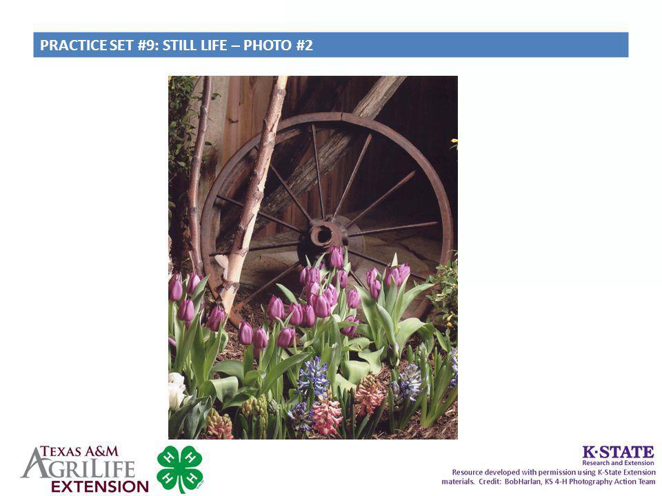 PRACTICE SET #9: STILL LIFE – PHOTO #2