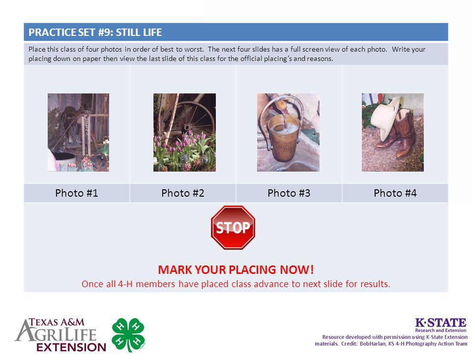 MARK YOUR PLACING NOW! PRACTICE SET #9: STILL LIFE Photo #1 Photo #2