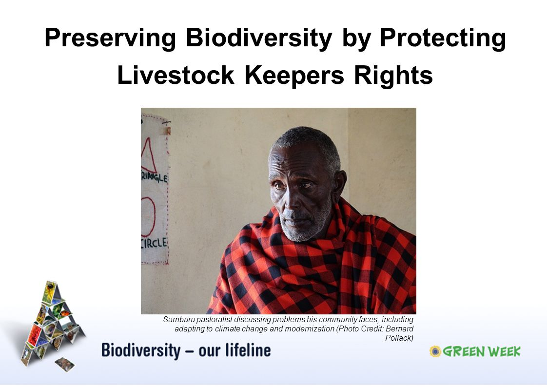 Preserving Biodiversity by Protecting Livestock Keepers Rights
