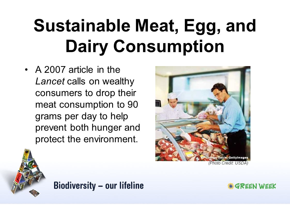 Sustainable Meat, Egg, and Dairy Consumption