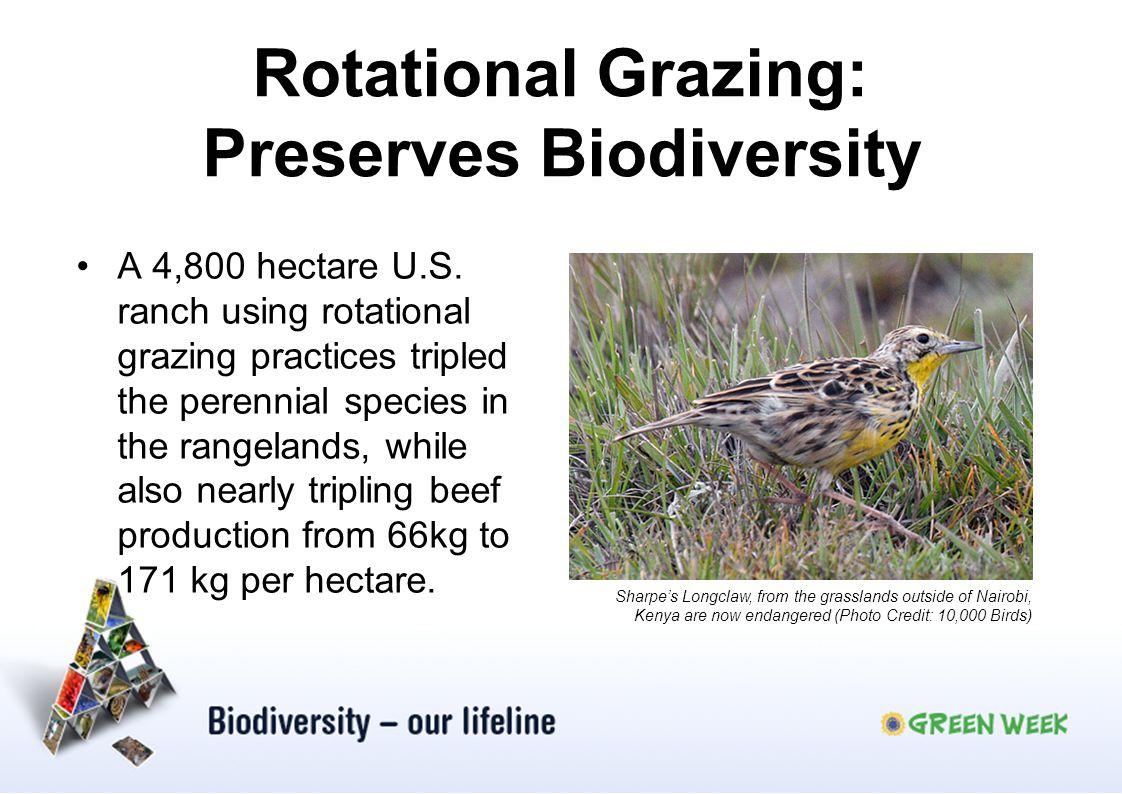 Rotational Grazing: Preserves Biodiversity