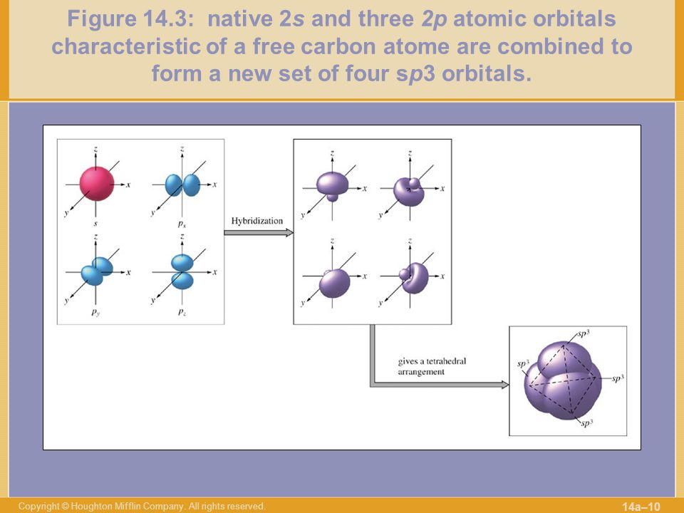 Figure 14.3: native 2s and three 2p atomic orbitals characteristic of a free carbon atome are combined to form a new set of four sp3 orbitals.