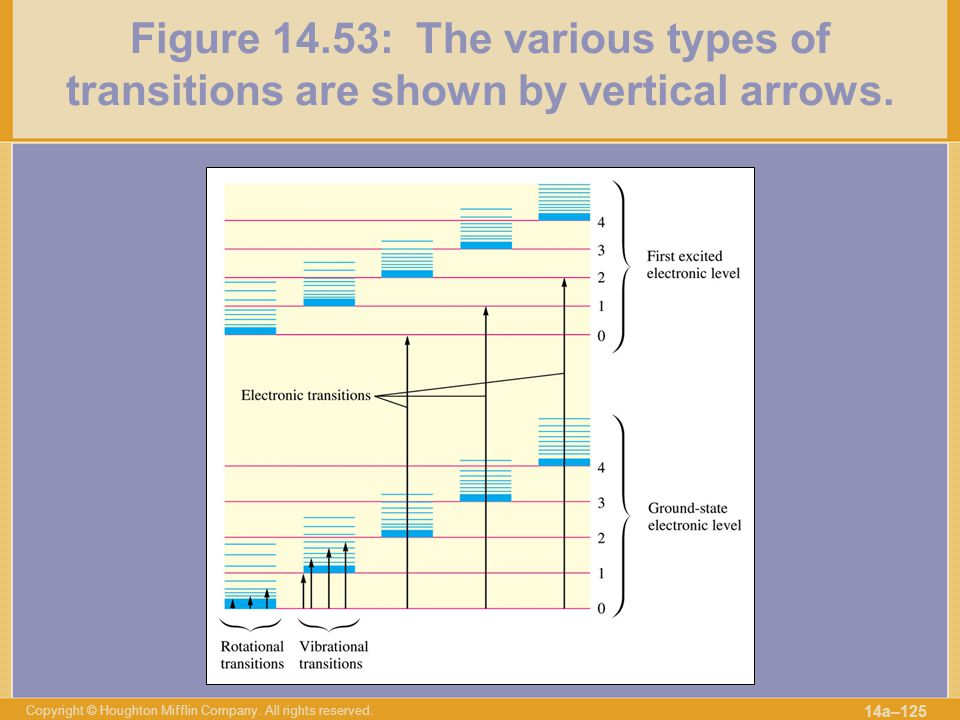 Figure 14.53: The various types of transitions are shown by vertical arrows.
