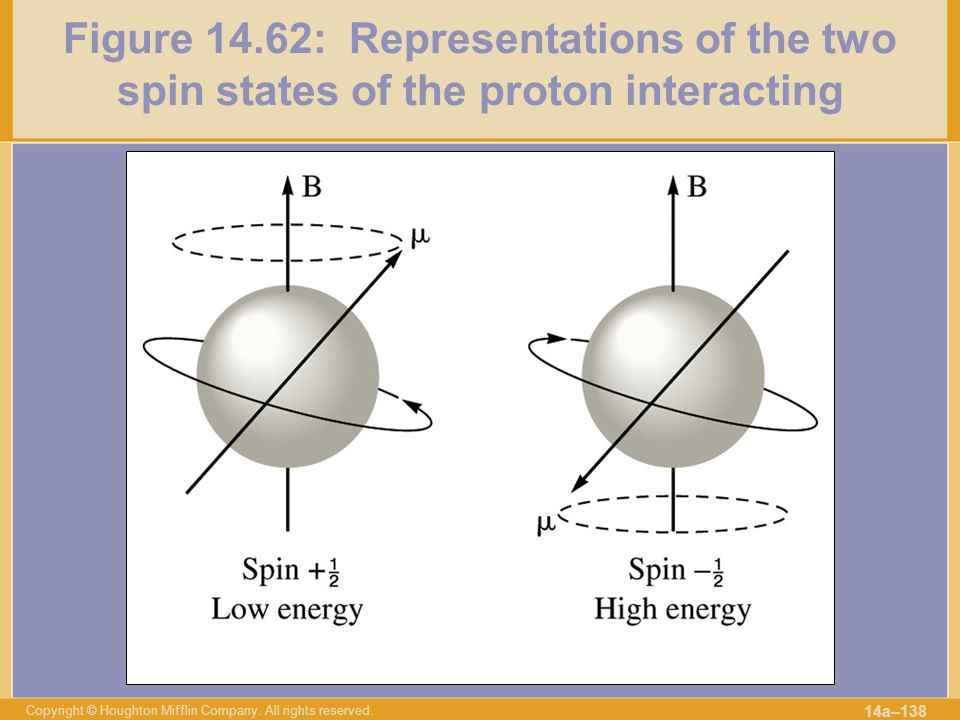 Figure 14.62: Representations of the two spin states of the proton interacting