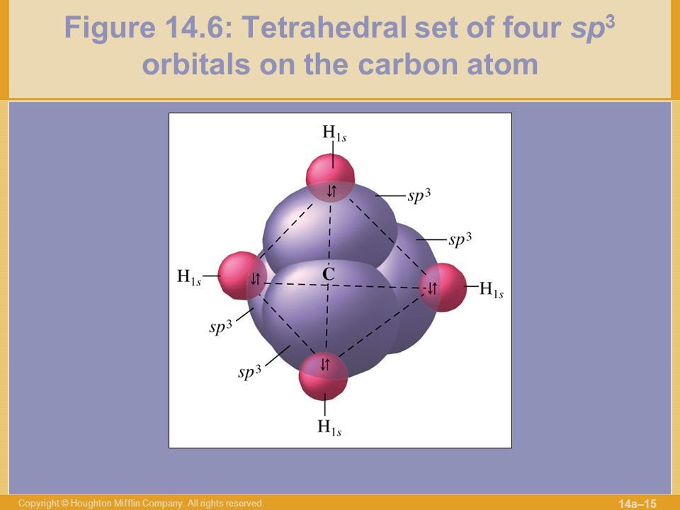 Figure 14.6: Tetrahedral set of four sp3 orbitals on the carbon atom