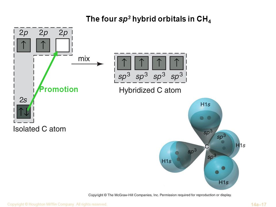 The four sp3 hybrid orbitals in CH4