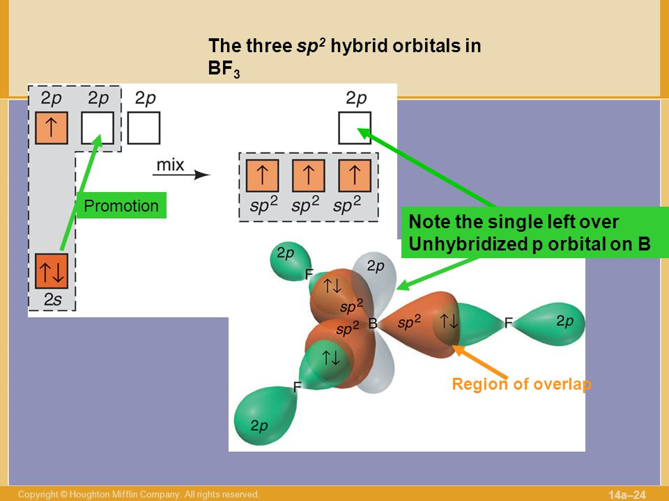 The three sp2 hybrid orbitals in BF3