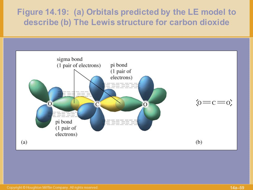 Figure 14.19: (a) Orbitals predicted by the LE model to describe (b) The Lewis structure for carbon dioxide