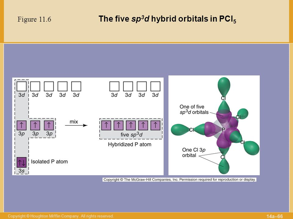 The five sp3d hybrid orbitals in PCl5
