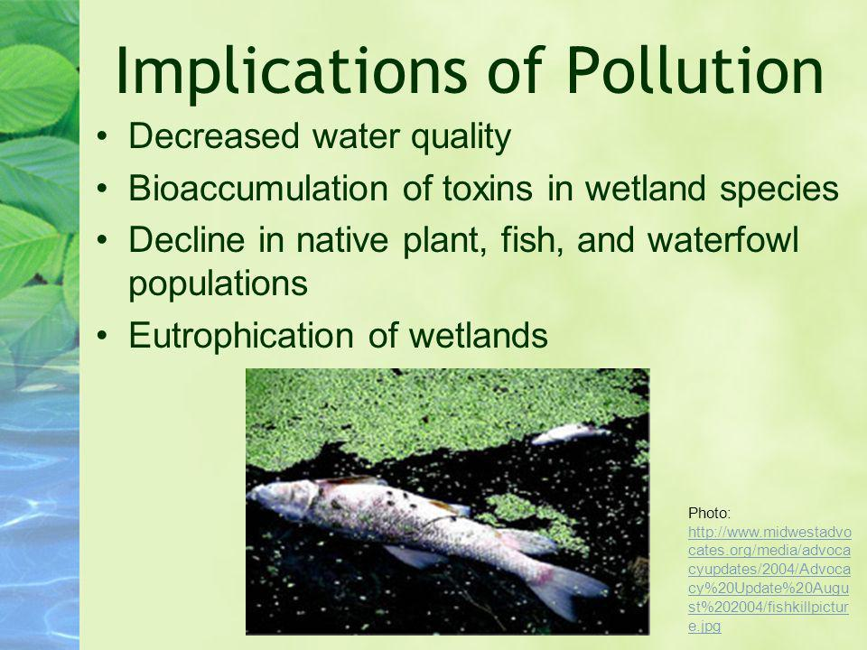Implications of Pollution