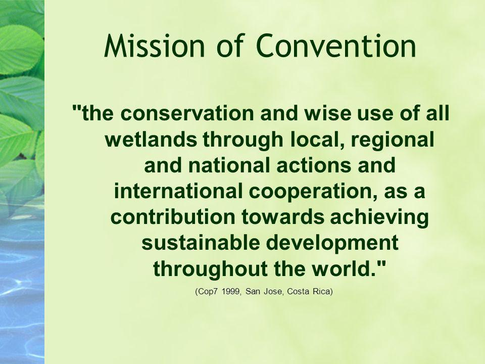 Mission of Convention