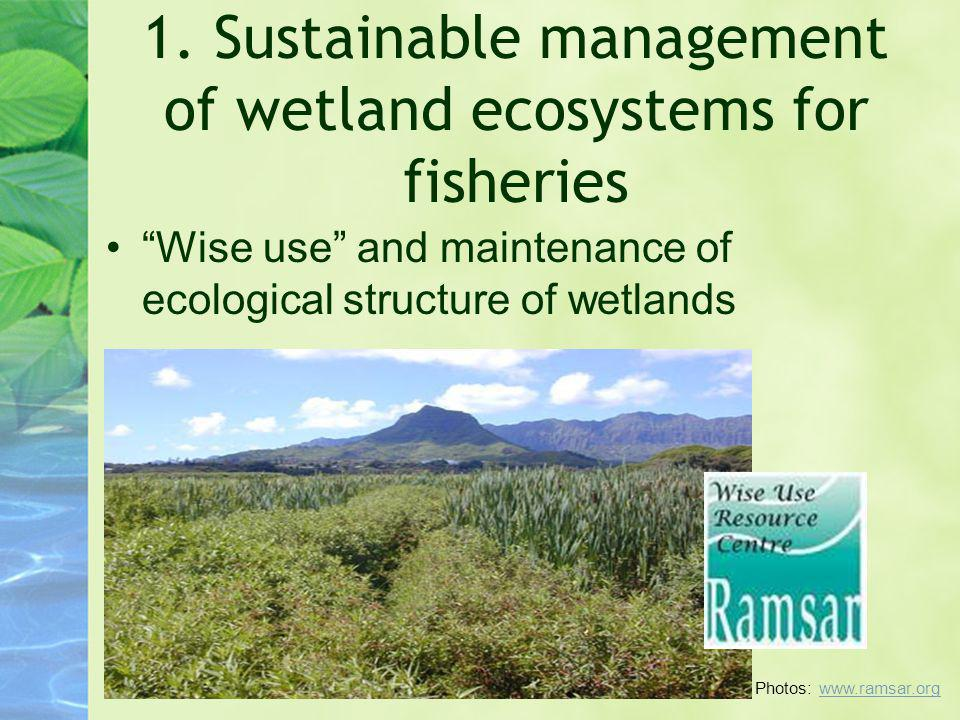 1. Sustainable management of wetland ecosystems for fisheries