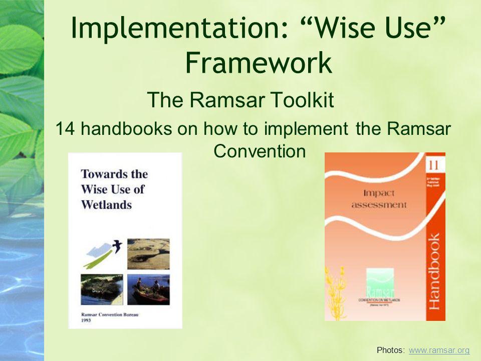 Implementation: Wise Use Framework