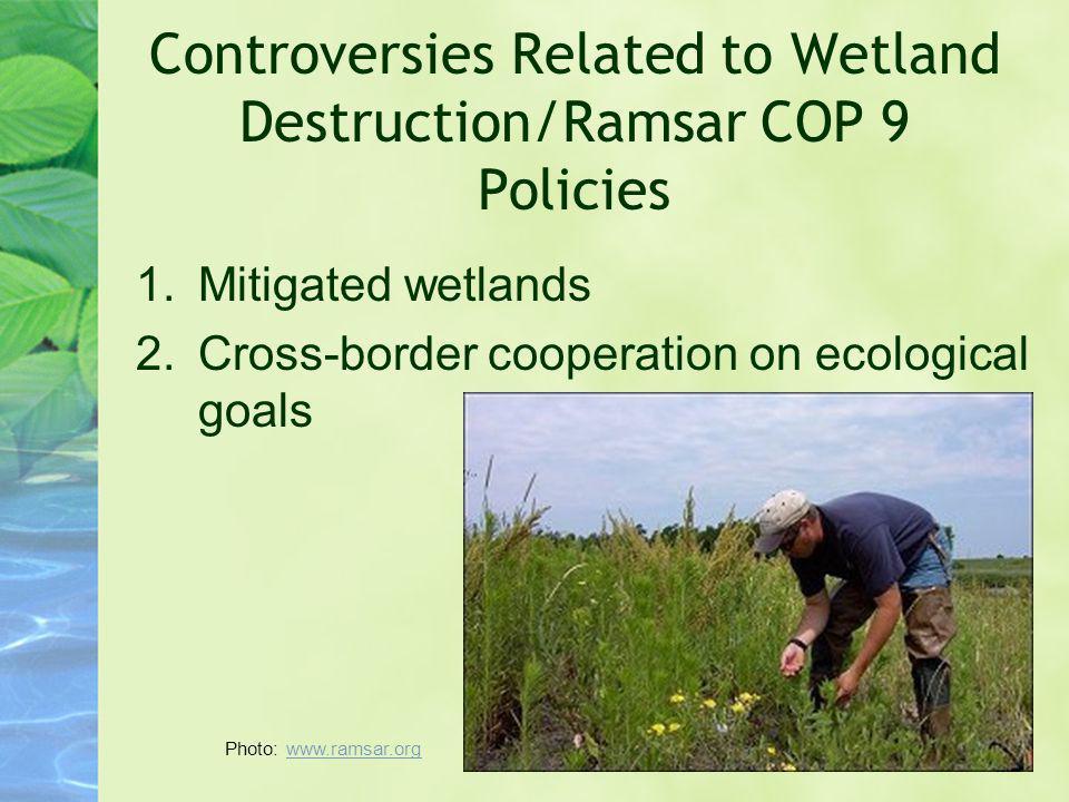 Controversies Related to Wetland Destruction/Ramsar COP 9 Policies