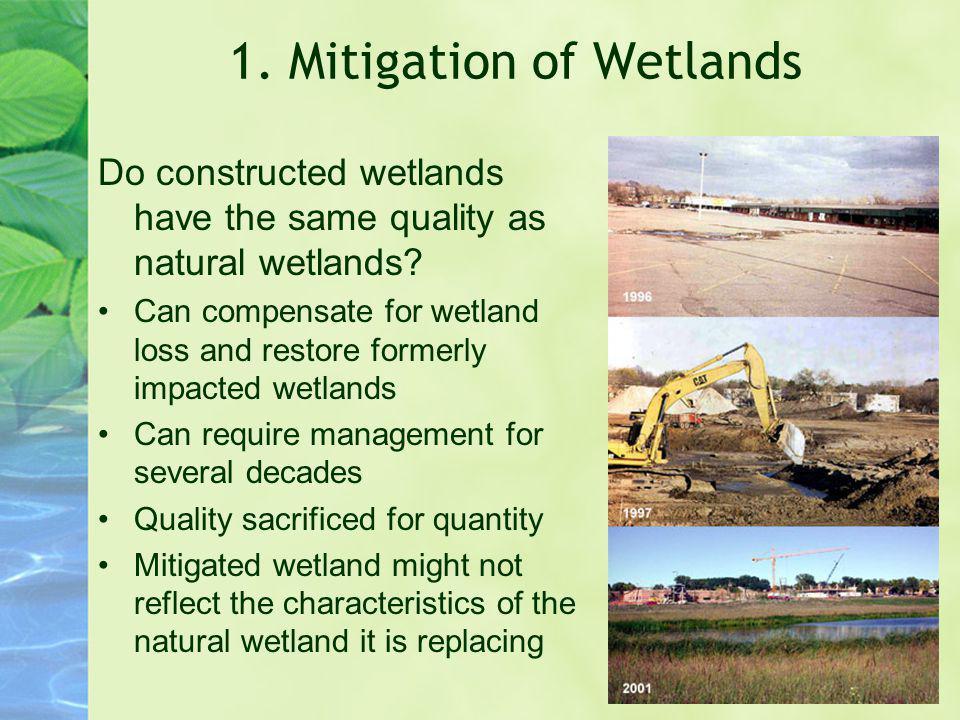 1. Mitigation of Wetlands