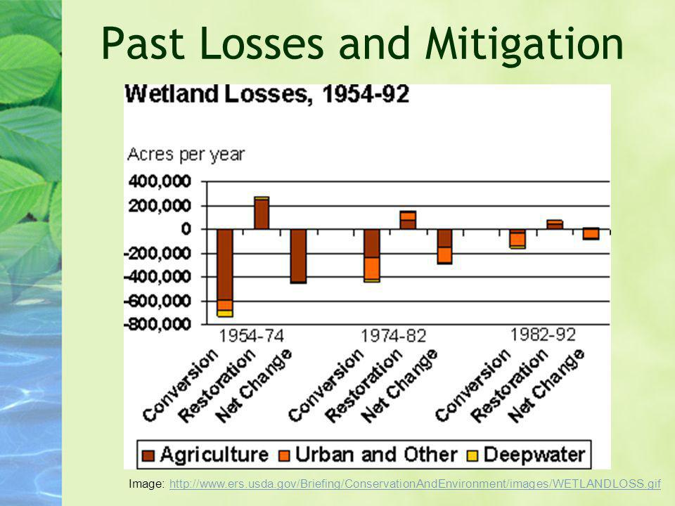 Past Losses and Mitigation