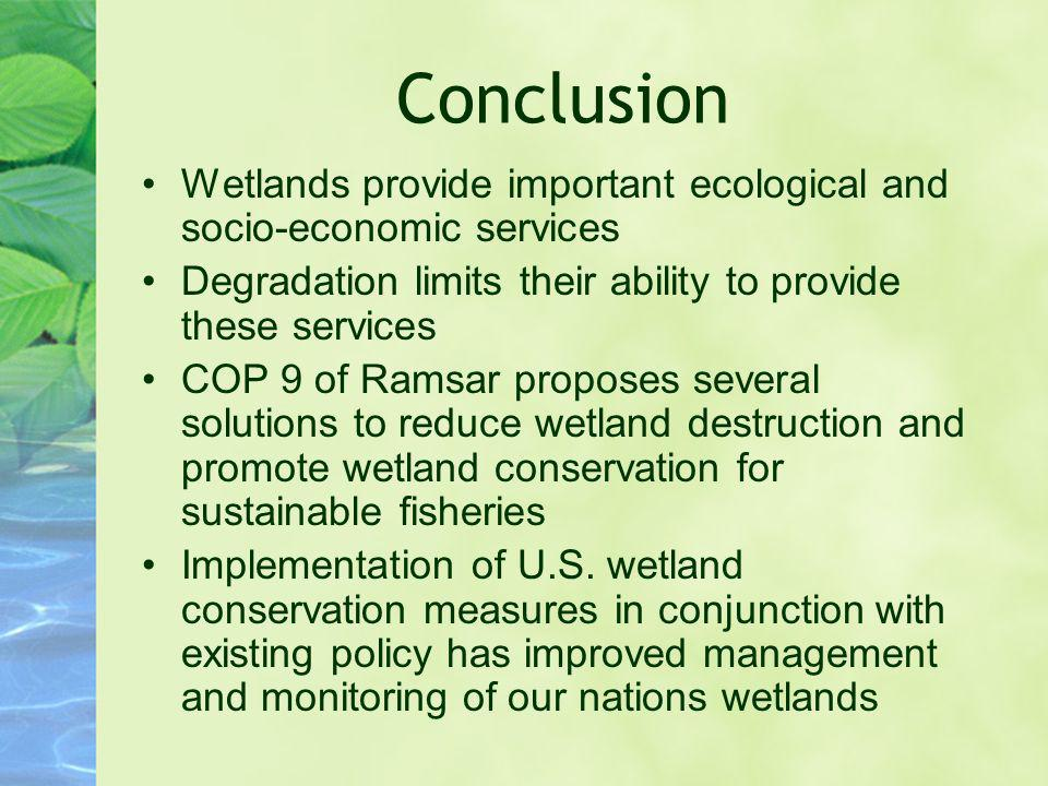 Conclusion Wetlands provide important ecological and socio-economic services. Degradation limits their ability to provide these services.