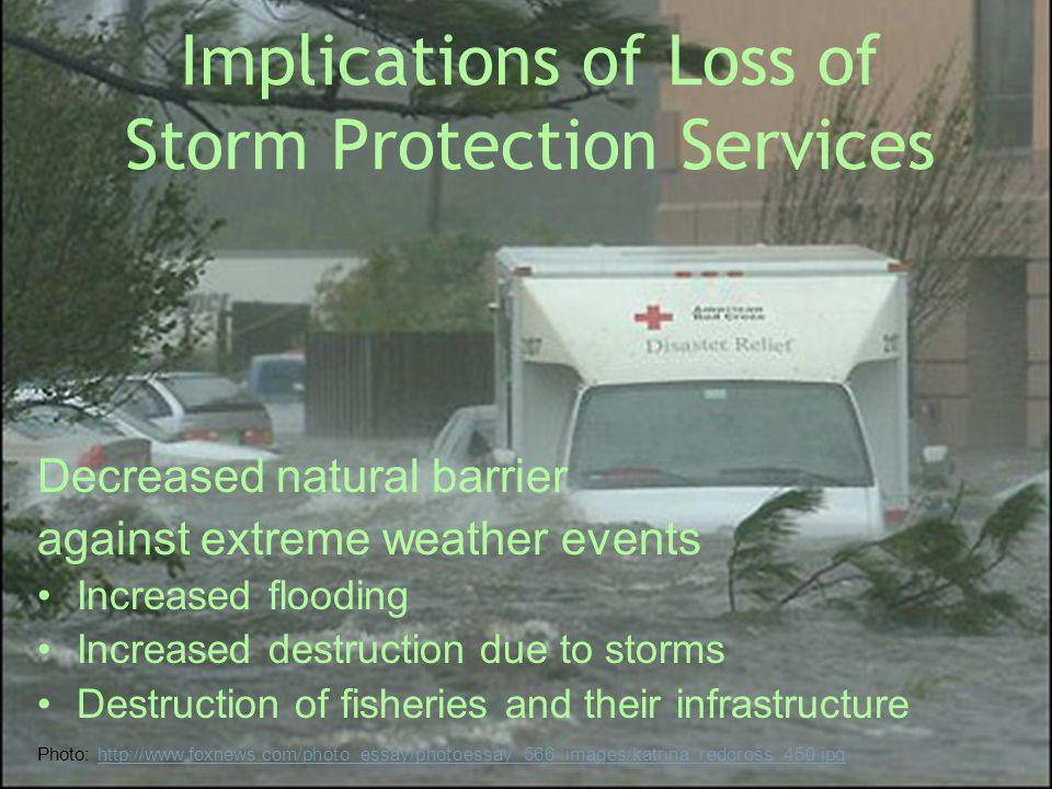 Implications of Loss of Storm Protection Services
