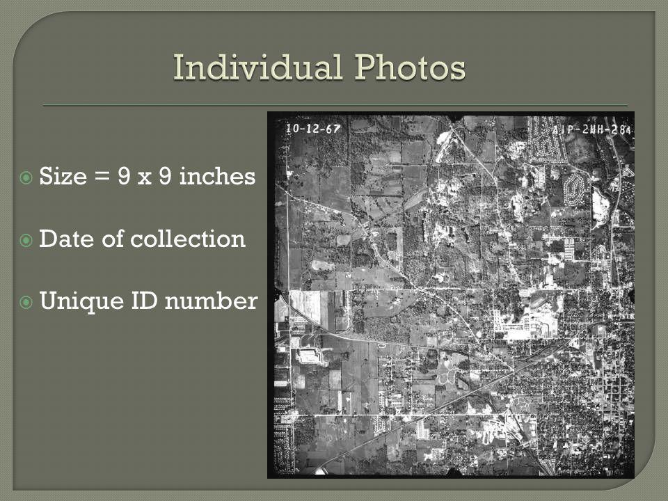 Individual Photos Size = 9 x 9 inches Date of collection