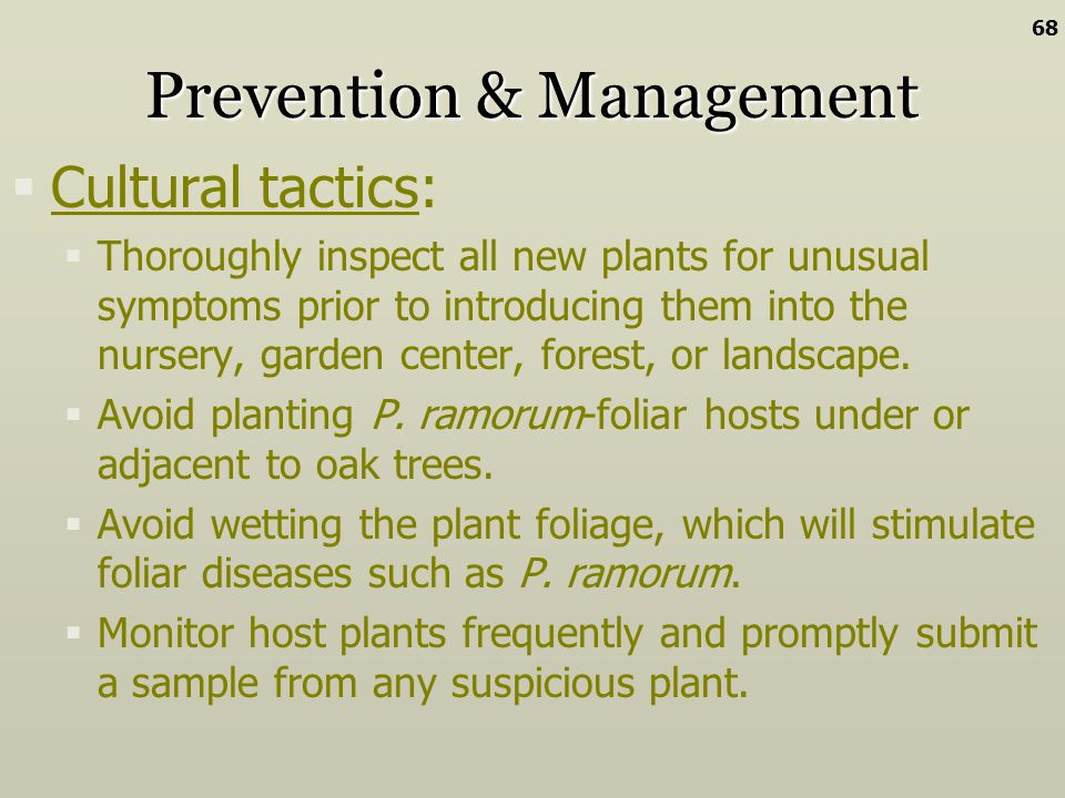 Prevention & Management