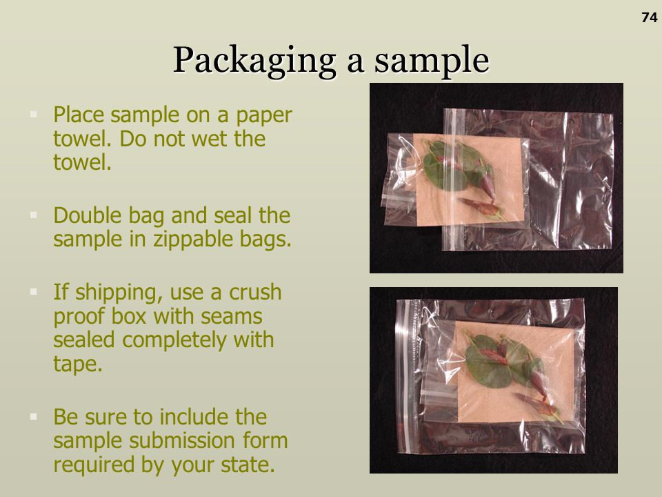 74 Packaging a sample. Place sample on a paper towel. Do not wet the towel. Double bag and seal the sample in zippable bags.