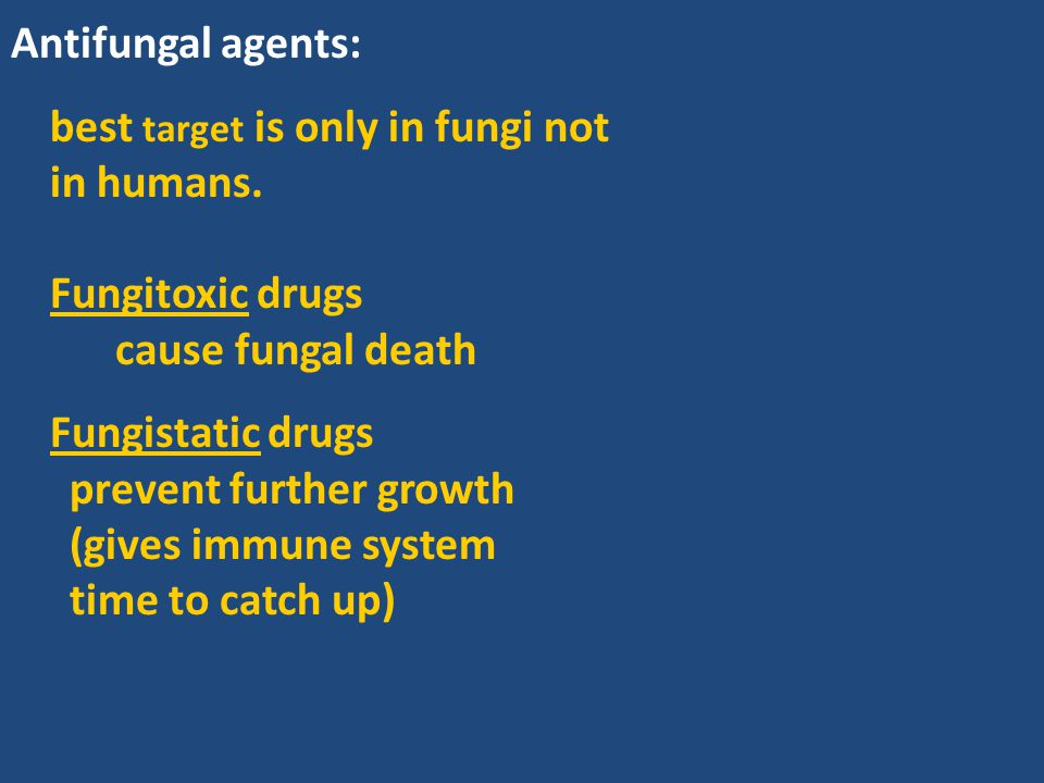 Antifungal agents: best target is only in fungi not in humans. Fungitoxic drugs. cause fungal death.