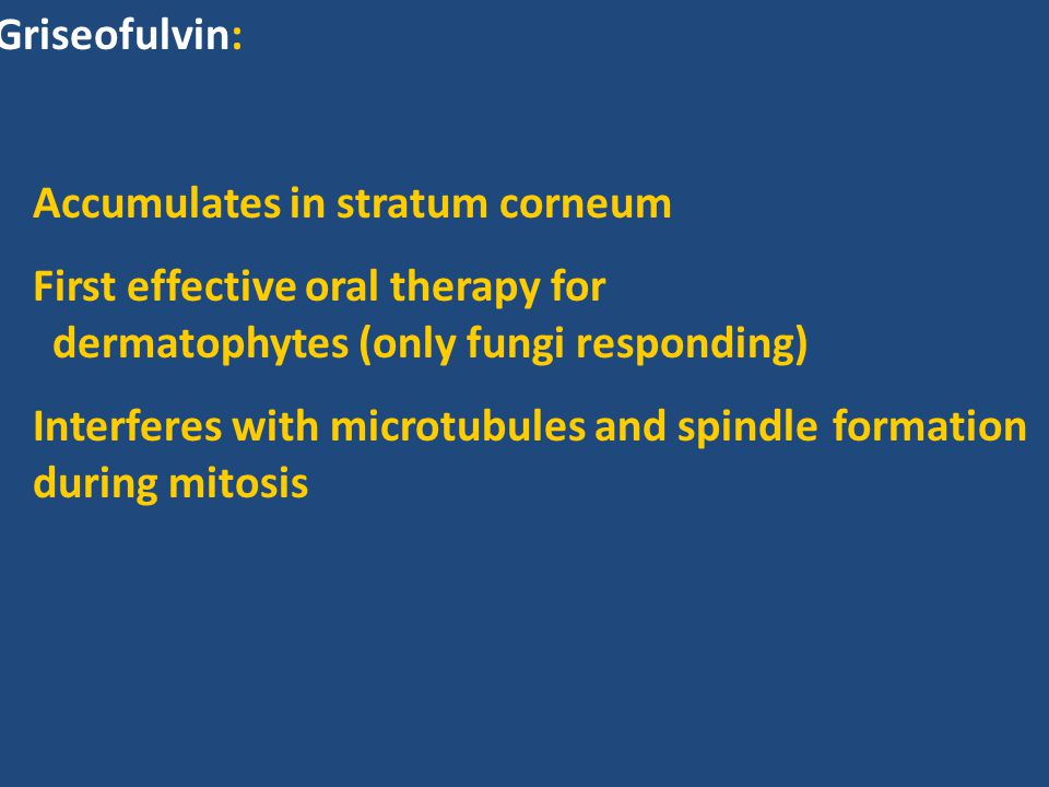 Griseofulvin: Accumulates in stratum corneum. First effective oral therapy for dermatophytes (only fungi responding)