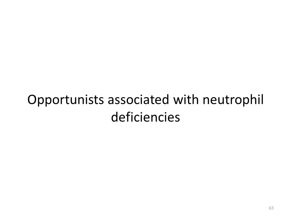 Opportunists associated with neutrophil deficiencies