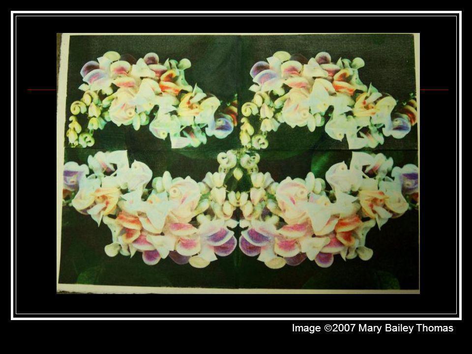 Image 2007 Mary Bailey Thomas