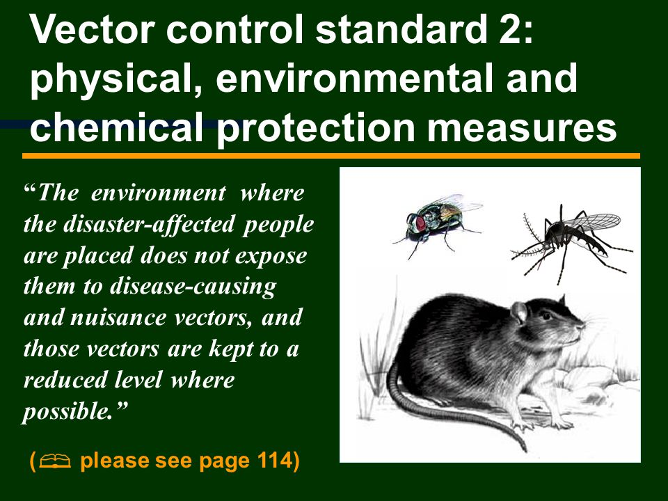 Vector control standard 2: physical, environmental and chemical protection measures