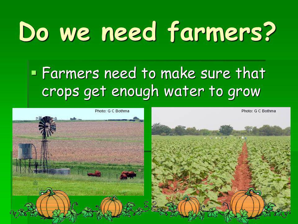 Do we need farmers Farmers need to make sure that crops get enough water to grow. Photo: G C Bothma.