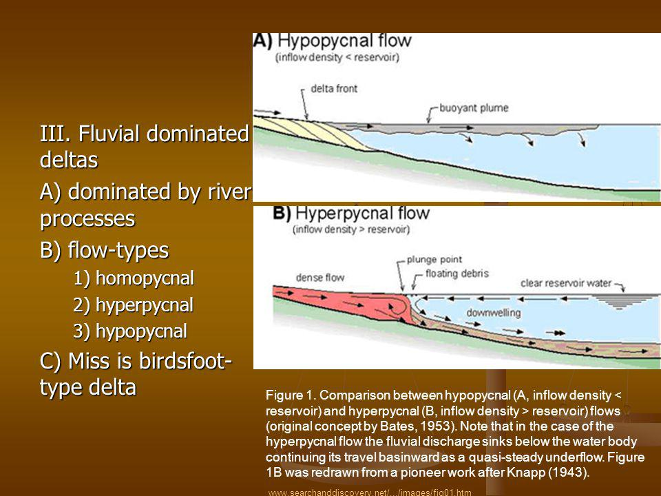 III. Fluvial dominated deltas A) dominated by river processes