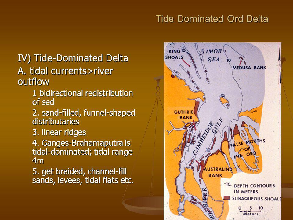 Tide Dominated Ord Delta