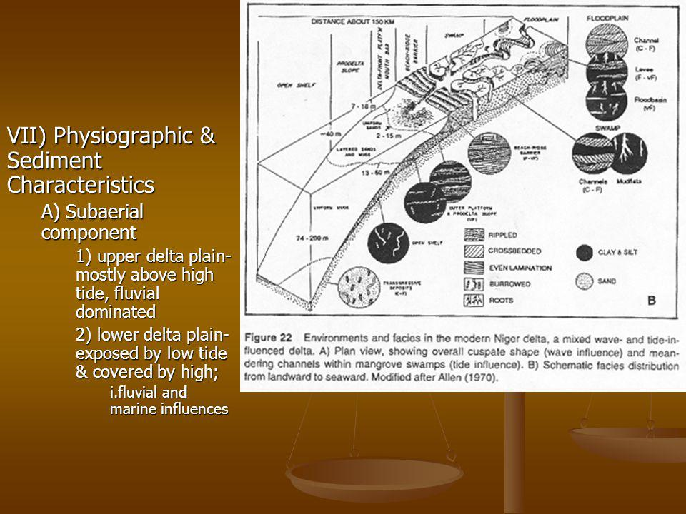 VII) Physiographic & Sediment Characteristics