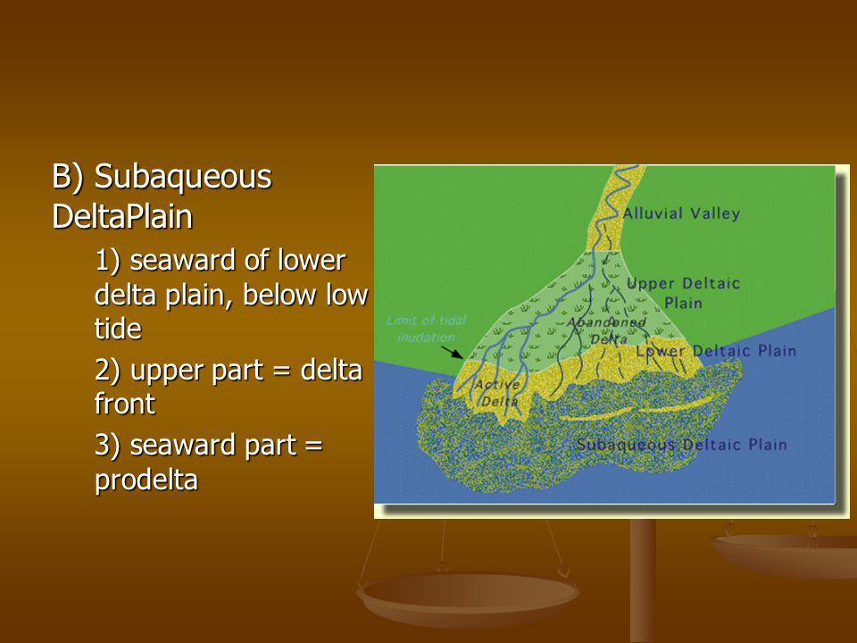 B) Subaqueous DeltaPlain