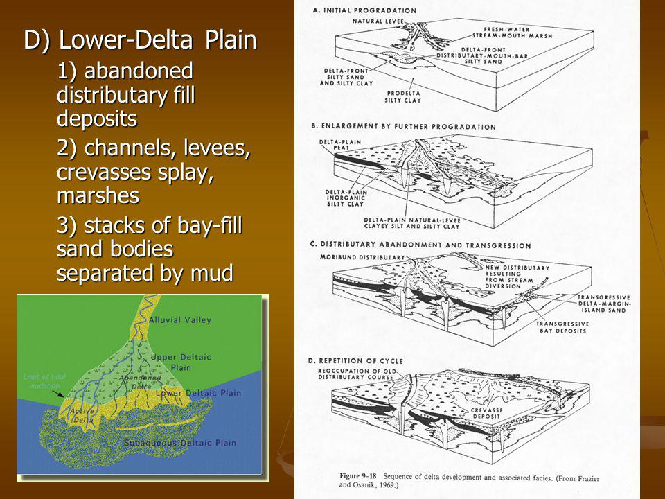 D) Lower-Delta Plain 1) abandoned distributary fill deposits