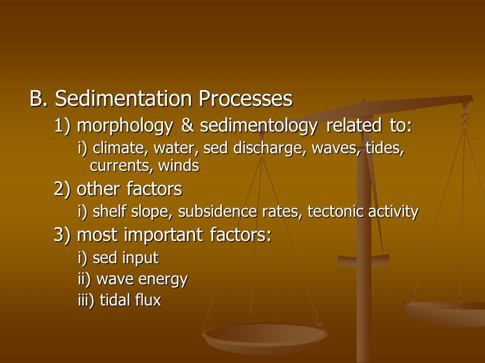 B. Sedimentation Processes