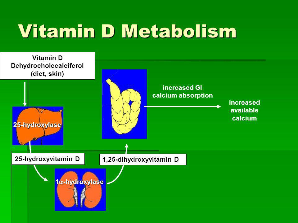 Dehydrocholecalciferol (diet, skin)