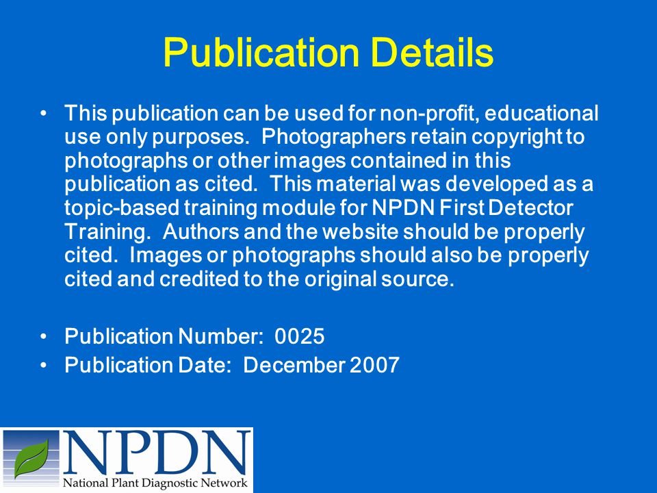 Publication Details