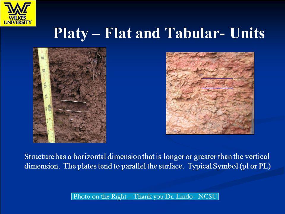 Platy – Flat and Tabular- Units