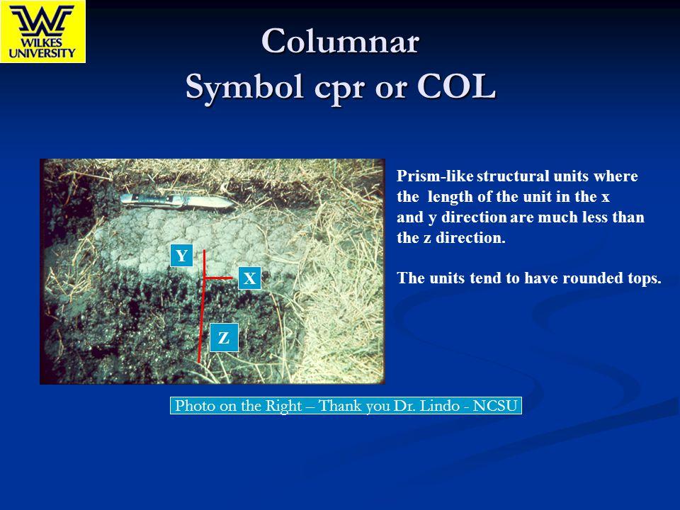 Columnar Symbol cpr or COL